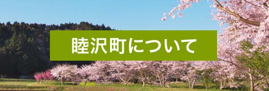 睦沢町について